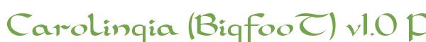 Télécharger la police d'écriture Carolingia (BigfooT) v1.0 Prev